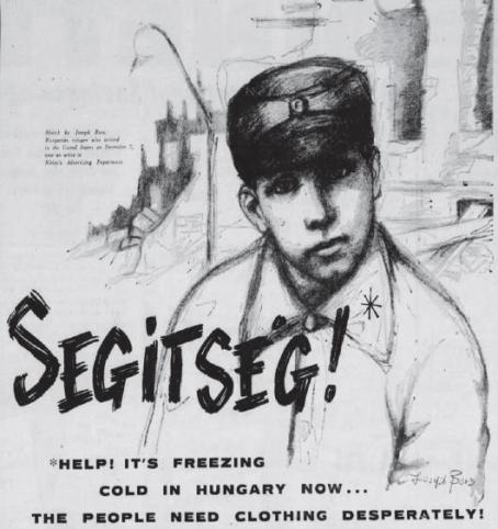 hungarian-sibley-poster